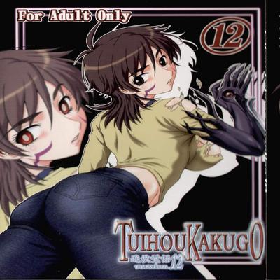 TUIHOU KAKUGO Version.12 (Witch Blade)
