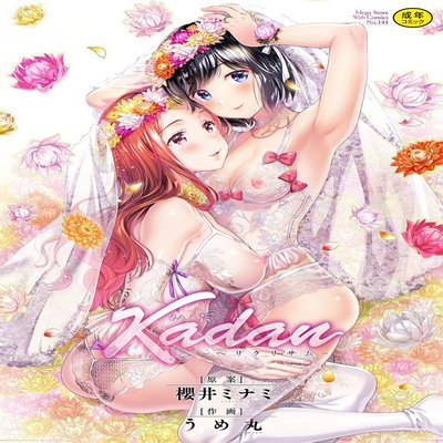 Kadan -Helichrysum-