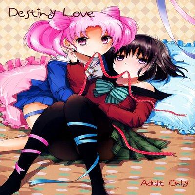 Destiny Love